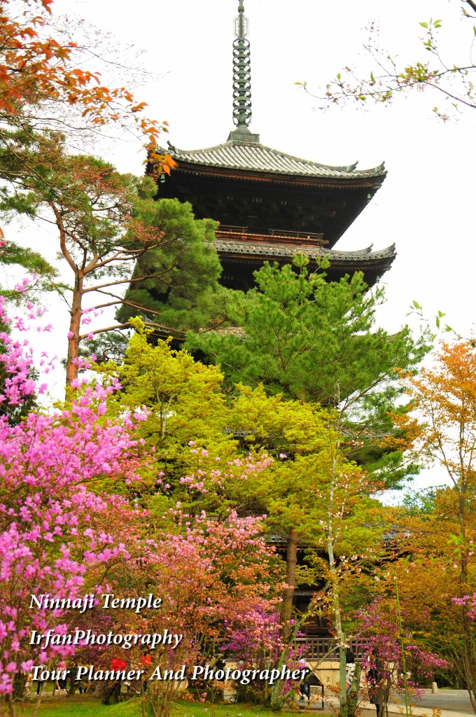 listed in UNESCO World Heriage sites and belong to Omura School of the shingon sect Budha